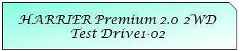 01 Mark TOYOTA HARRIER PREMIUM 2WD TD1-02.JPG