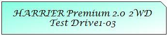 01 Mark TOYOTA HARRIER PREMIUM 2WD TD1-03.JPG