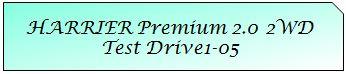 01 Mark TOYOTA HARRIER PREMIUM 2WD TD1-05.JPG