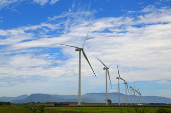 Wind farm of HONDA.jpg