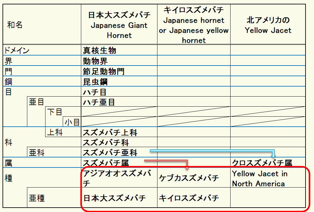 difference of Hornet and Yellow Jacket in taxonomy by Japanese.PNG