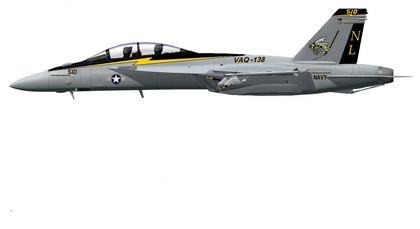 VAQ-138Newtail.JPG
